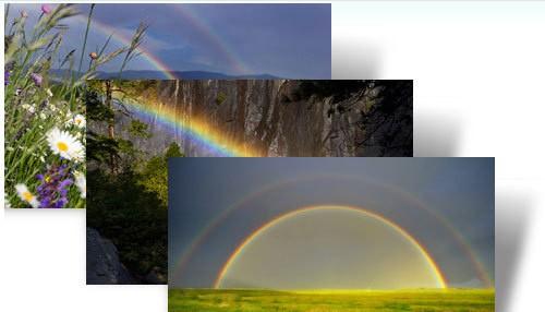 Rainbows theme windows xp theme