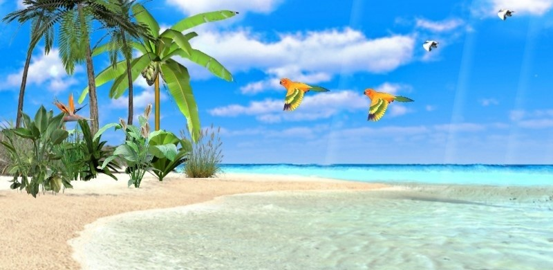 Exotic Beaches 3D