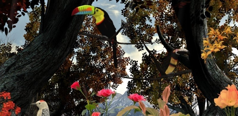 Birds of Nature 3D