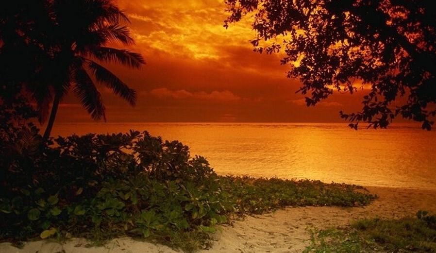 Beach Scene Sunset Wallpaper Download Softwares LisoSoft