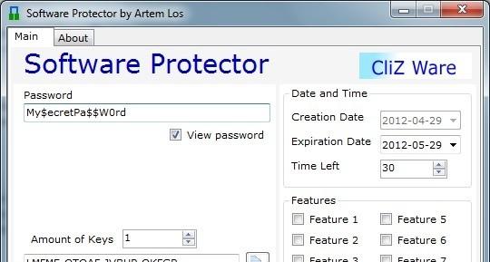 Software Protector full screenshot