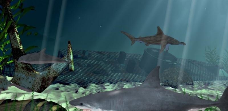 Underwater worlds 3D