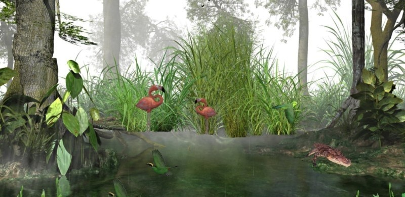 Tropical Rainforest 3D