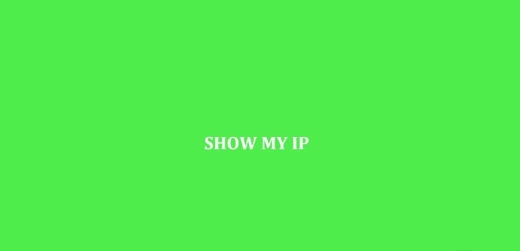 Show My IP for Windows 8