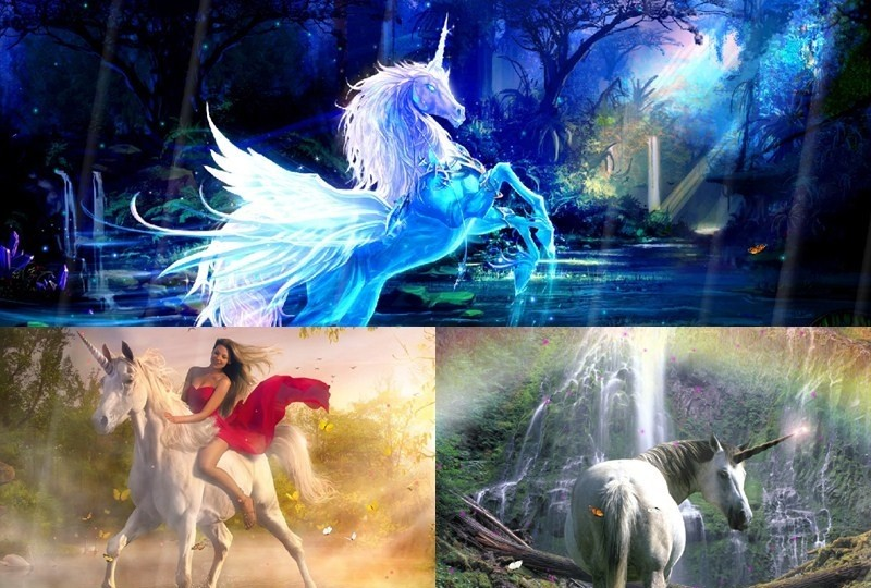 Magic Unicorns Screensaver