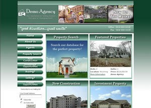 e3 Real Estate Agent Website
