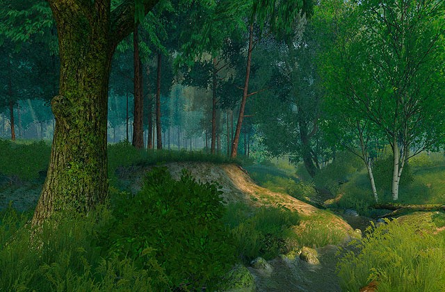 Summer Forest 3D Screensaver
