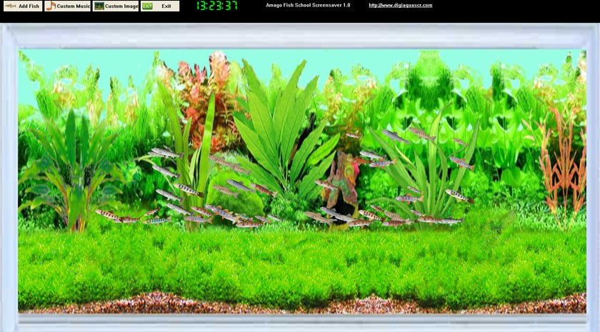 Amago Fish School Screensaver