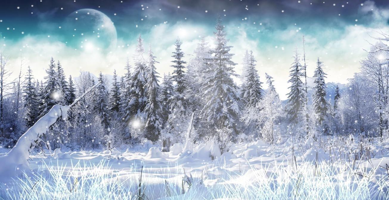 Download Winter Snow Animated Wallpaper | LisoSoft